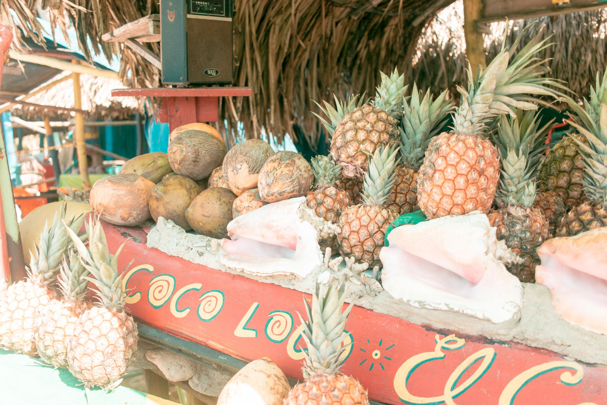 Cartagena Travel Guide Colombia Islas de Rosario Playa Blanca coconuts pineapples