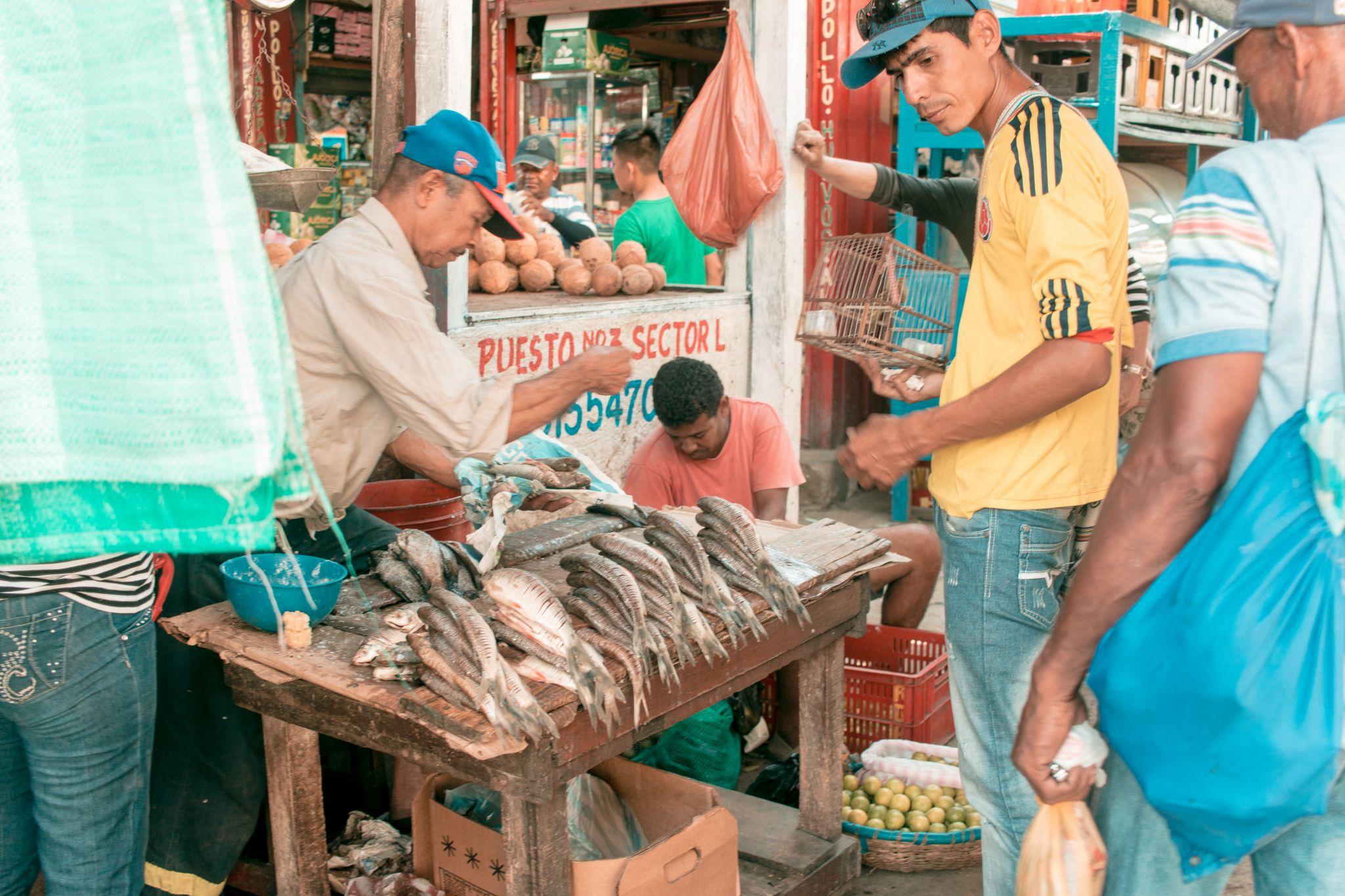 Cartagena Travel Guide Mercado Bazurto Colombia fish stall