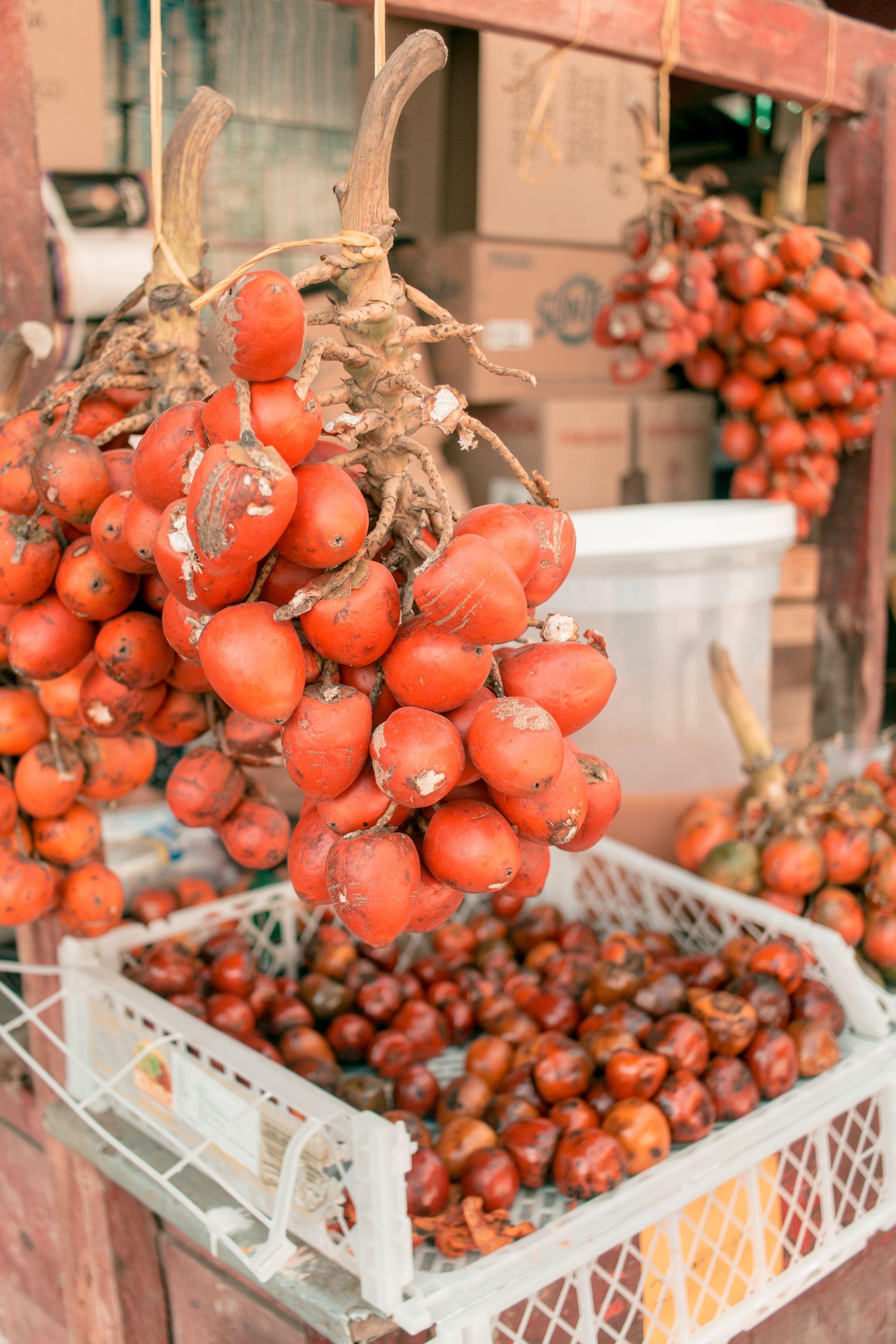 Cartagena Travel Guide Mercado Bazurto Colombia vegetables