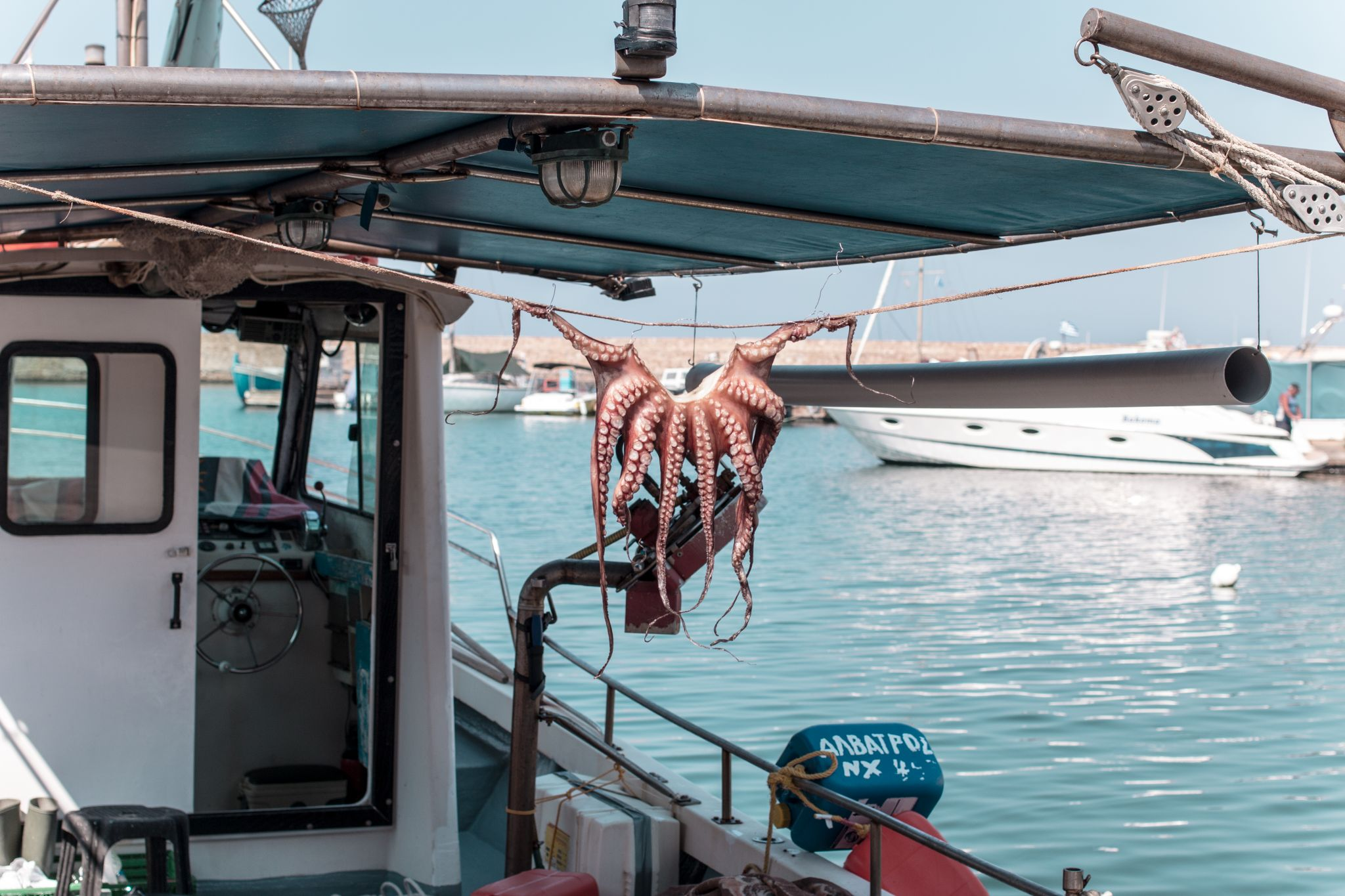 Crete Travel Guide Chania Octopus
