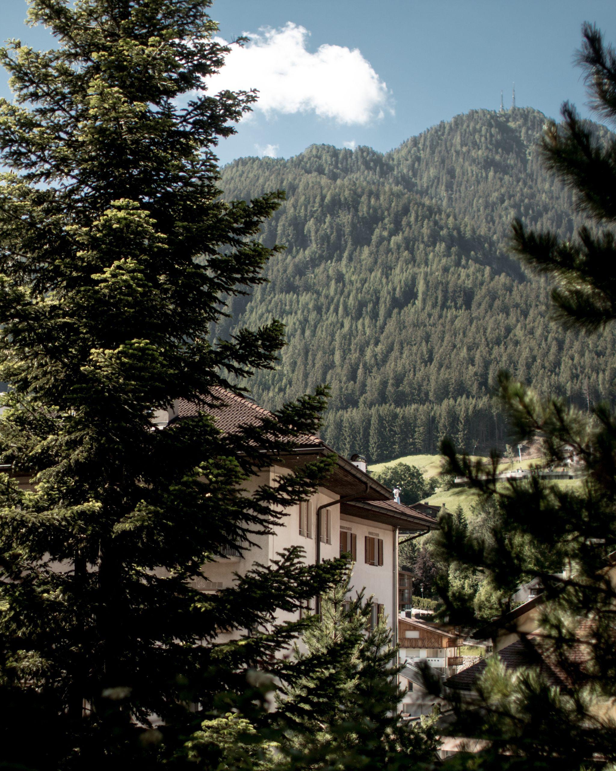 Adler Dolomites Ortisei Italy Hotel Review_