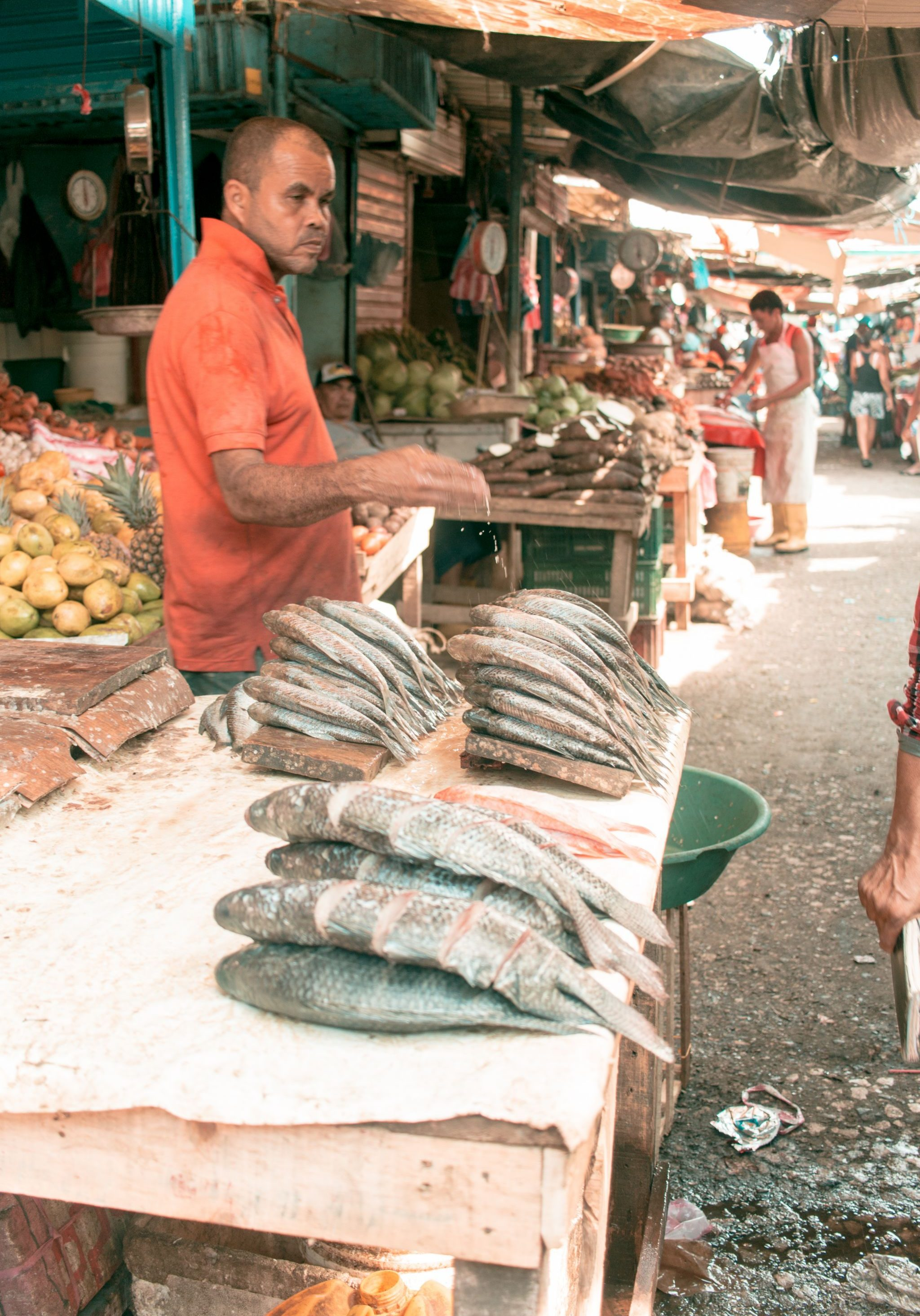 Cartagena Travel Guide Mercado Bazurto fish seller