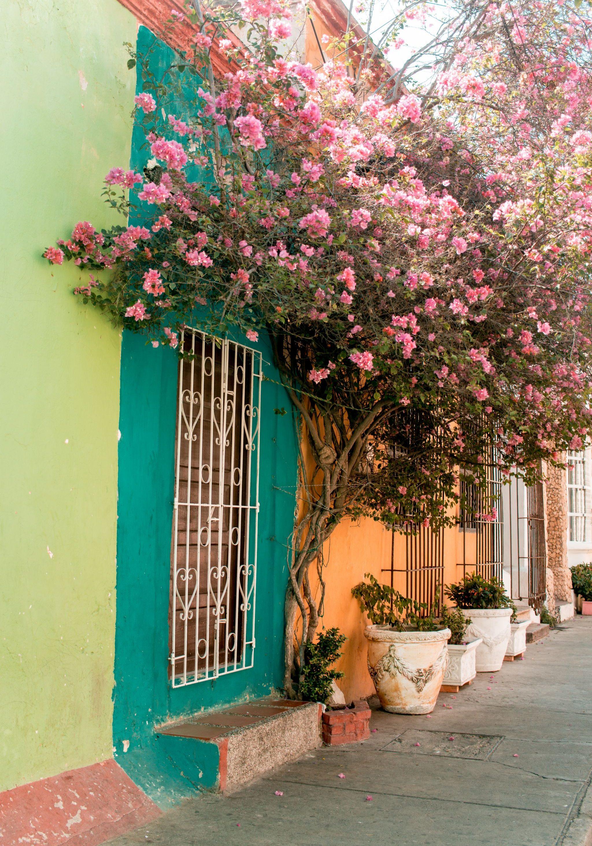 Colombia travel guide Getsemani street