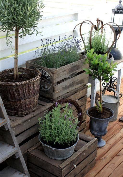 small-garden-flower-ideas